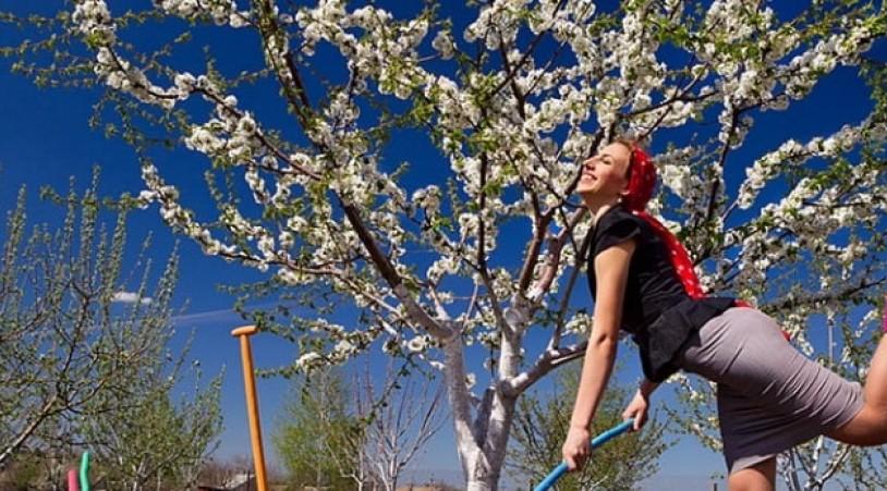 Весна на шести сотках